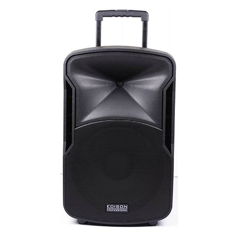 Edison Professional 2000W Wireless Bluetooth Speaker System